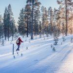 Talvilomaviikko vaikuttaa verkko-opintojen arviointiaikatauluihin